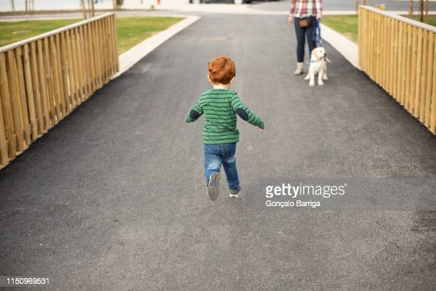 boy running towards mother and pet puppy - runaway stock pictures, royalty-free photos & images