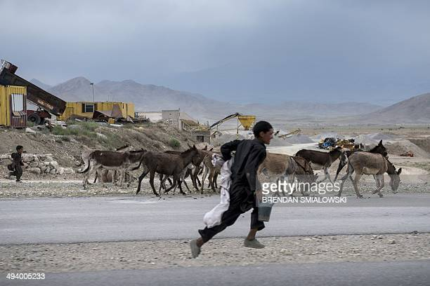 A boy runs with donkeys on the road to Bagram Airfield in Parwan on May 26 2014 Afghanistan remains at war with civilians among the hardest hit as...