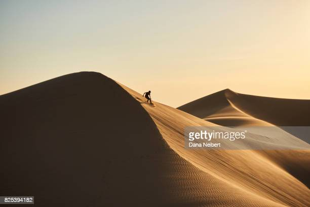 boy sand surfing in the desert sand dunes - sand dune stock pictures, royalty-free photos & images