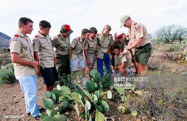 Boy Scouts on desert field trip.