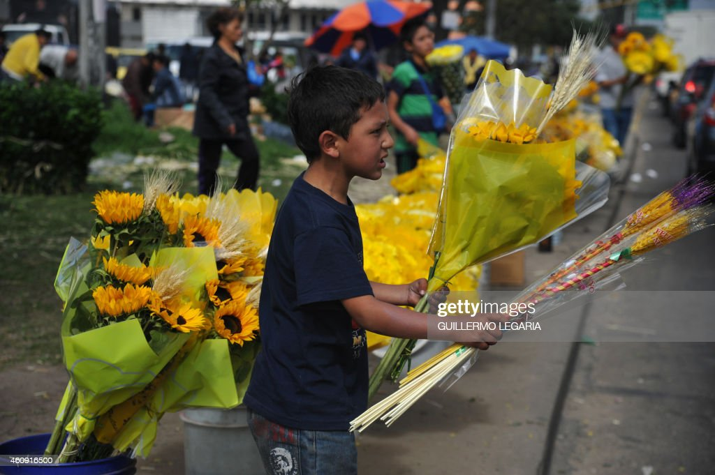 A boy sells yellow flowers, used for New Year's rituals, at a street of Bogota, Colombia, on December 30, 2014. In great part of Latin America, New Year is celebrated with deeply rooted omens as wheat ears and yellow flowers, herb and champagne baths, walking around the block with a suitcase, having lentils in the pocket, putting potatoes under the bed and the ritual of the 12 grapes. AFP PHOTO/Guillermo LEGARIA /