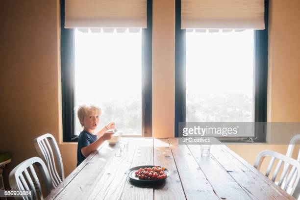 Boy sitting at dining table looking at camera, surprised, Fairfax, California, USA, North America
