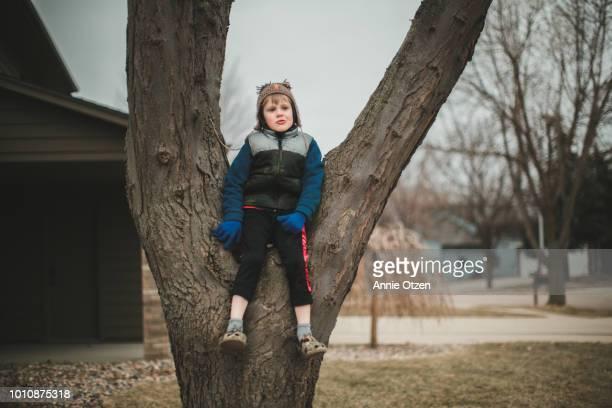 Boy Sitting in a Tree