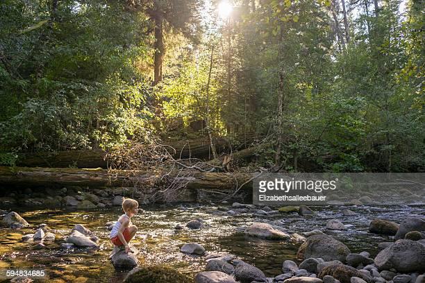 Boy sitting on a rock in forest creek