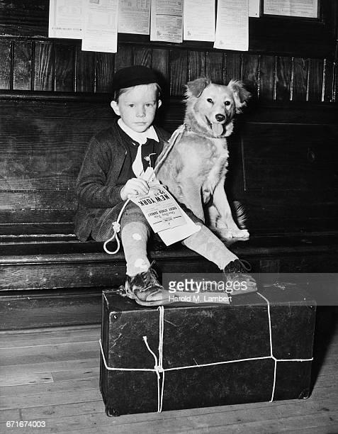 boy sitting with dog in railway station - escrita ocidental - fotografias e filmes do acervo
