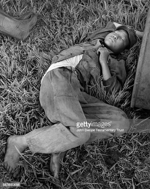 Boy sleeping in grass