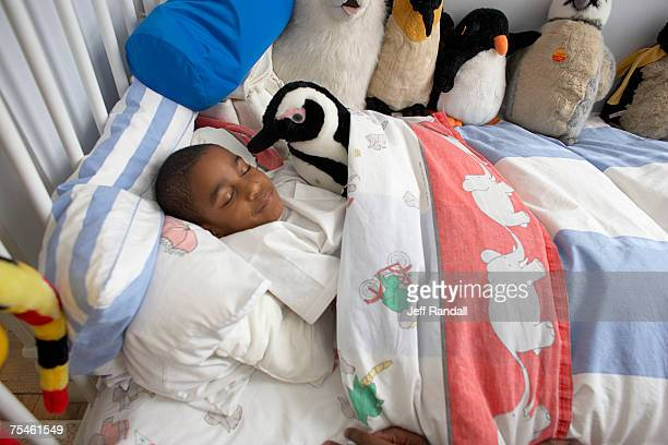 Boy (6-7) sleeping with soft toys, elevated view