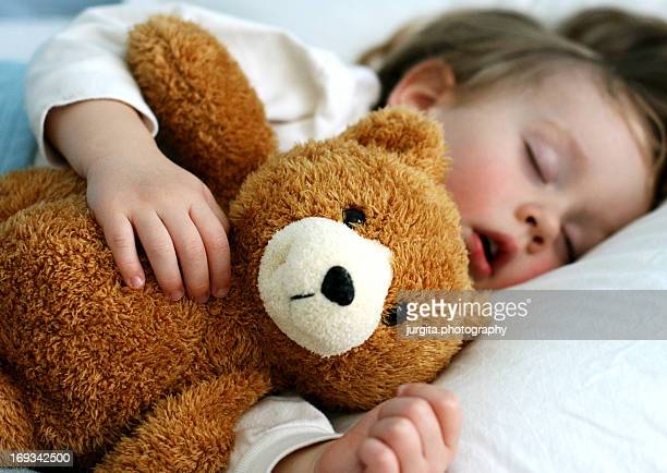 60 Top Teddy Bear Pictures, Photos, & Images - Getty Images
