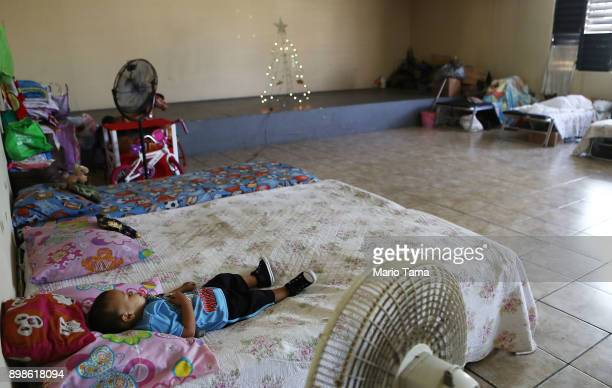 A boy sleeps in a shelter for Hurricane Maria victims on Christmas day on December 25 2017 in Toa Baja Puerto Rico 12 adults and 11 children...
