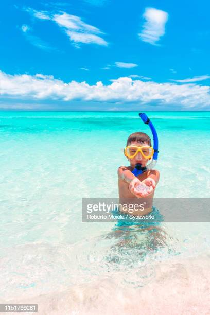 boy snorkelling and playing in the turquoise sea, caribbean - isla martinica fotografías e imágenes de stock