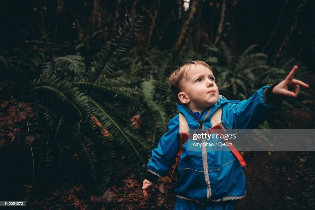 Boy Standing Against Tree : Stock Photo