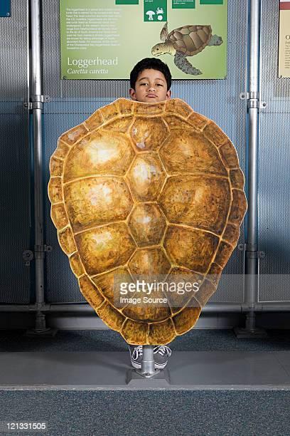 Boy standing behind loggerhead sea turtle shell