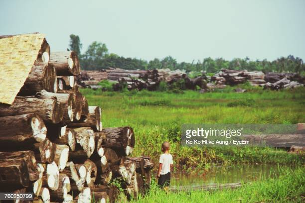 boy standing by stacked wooden logs on field - ko ko htike aung stock pictures, royalty-free photos & images