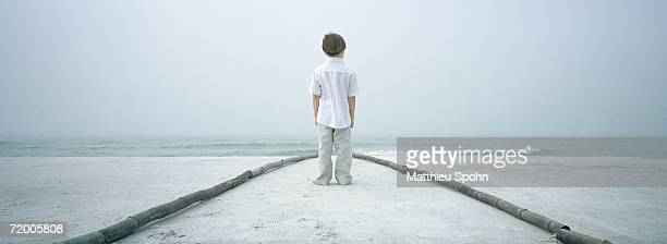 Boy standing in path on beach, facing horizon, rear view