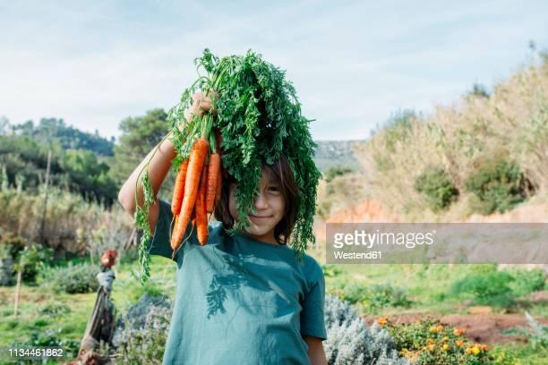 boy standing in vegetable garden, holding a bunch of carrots - jardinier humour photos et images de collection