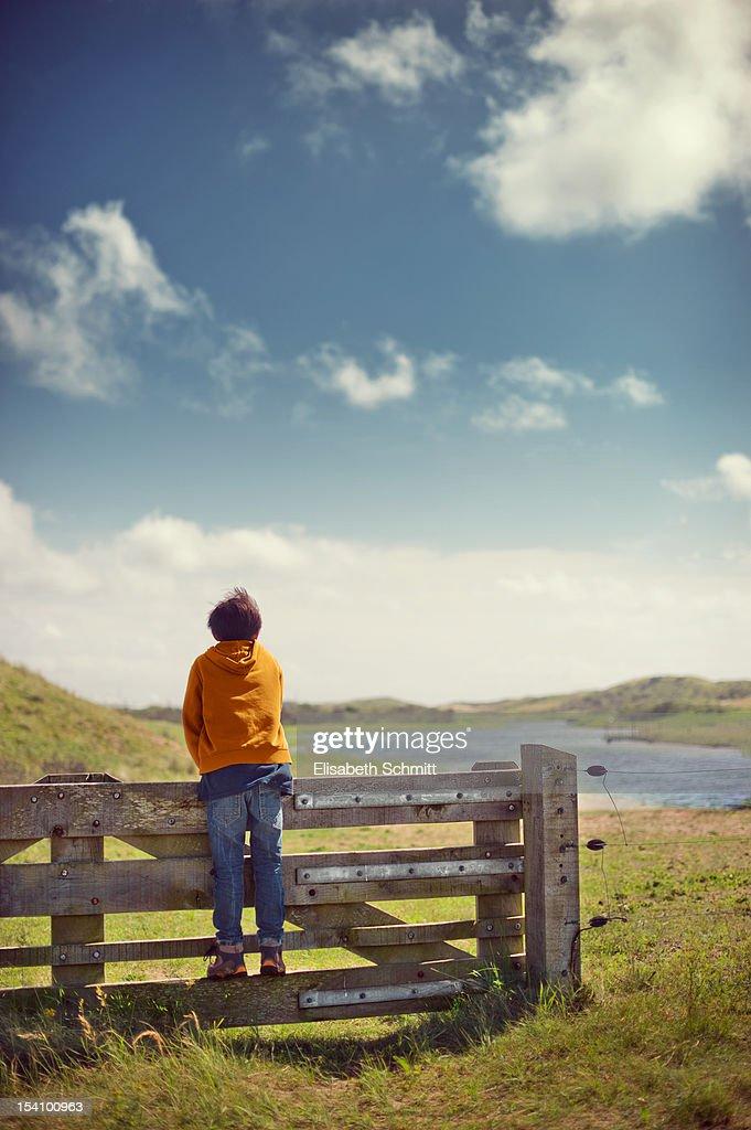 Boy standing on wooden gate, overlooking dunes : ストックフォト