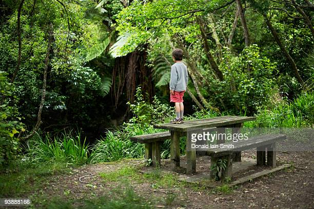 Boy stands on picnic table in woodland