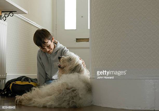 boy stroking dog in hallway - labradoodle stock photos and pictures
