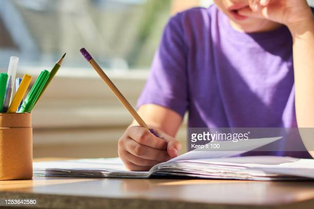 boy studying at home - ホームスクーリング ストックフォトと画像