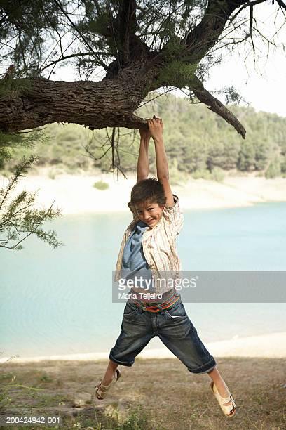 Boy (5-7) swinging from tree branch, smiling, portrait