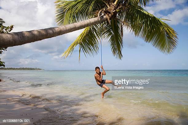 Boy (10-11) swinging on palm tree on tropical beach