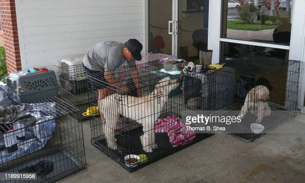 A boy takes car of dogs as evacuees shelters at the First Baptist Church in Hampshire on highway 124 on September 20 2019 in Beaumont Texas Gov Greg...