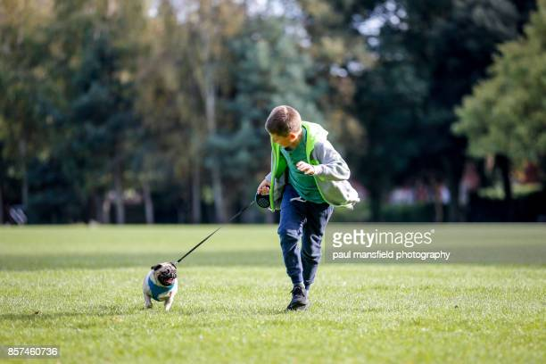 Boy taking his pet pug for a walk