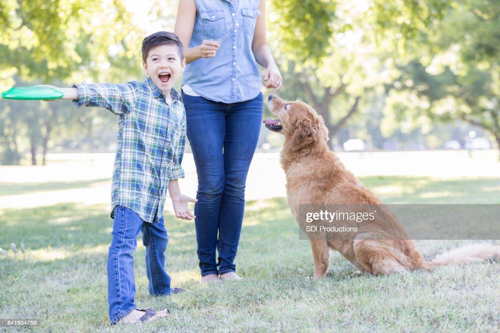 少年は犬にプラスチック製のディスクをスローします。 : ストックフォト