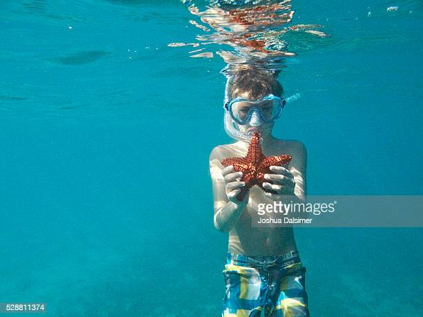 Boy underwater with Star fish