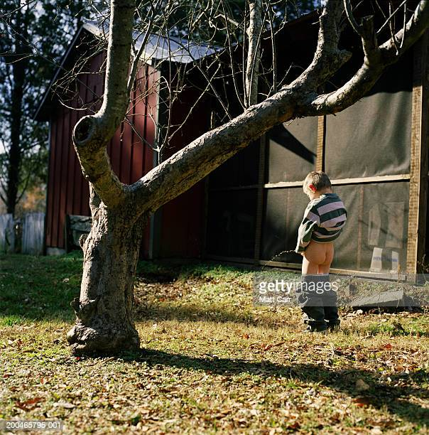 boy (4-6) urinating in yard, rear view - kids peeing stock pictures, royalty-free photos & images