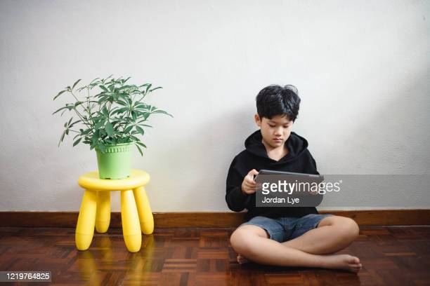 boy using digital tablet - one boy only stock pictures, royalty-free photos & images