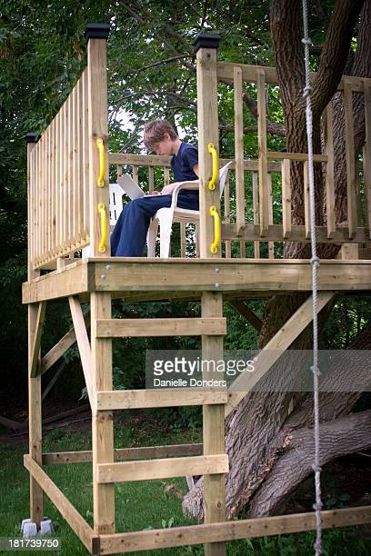 """boy using laptop in a treehouse - """"danielle donders"""" stock pictures, royalty-free photos & images"""