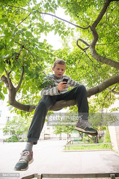 Boy using smartphone in tree.