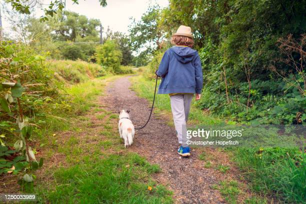a boy walking his dog in a park - boys stock pictures, royalty-free photos & images