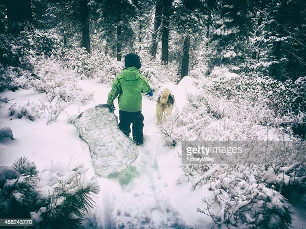 Boy walking his dog in a snowy forest