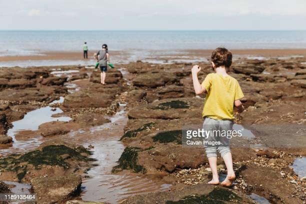 boy walking over rocky seashore towards sea with family - tidvattensbassäng bildbanksfoton och bilder