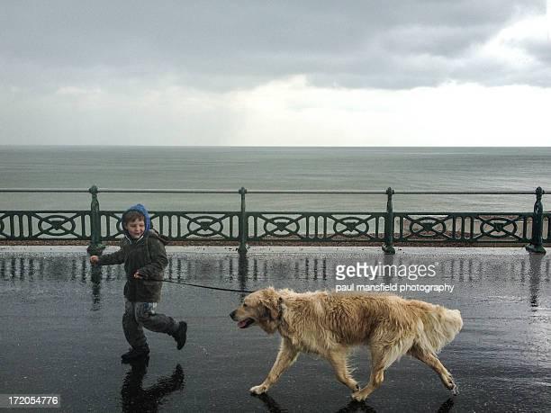 Boy walking pet dog in rain