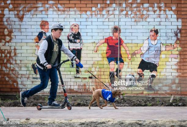TOPSHOT A boy walks a dog in front of a mural depicting children playing football in a park outside Rostov Arena in the southern Russian city of...