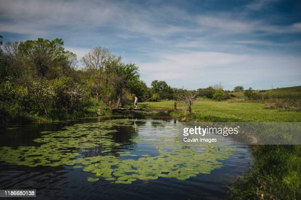 boy walks across bridge at lily pad pond in rural meadow - pequeno lago - fotografias e filmes do acervo