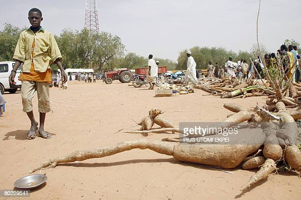 A boy walks past a long tube of cassava root on display during the food and agriculture fair heralding the Argungu fishing festival in Kebbi State...