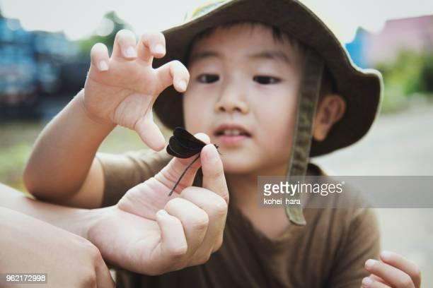 少年の父親の手でトンボを見て - 昆虫 ストックフォトと画像