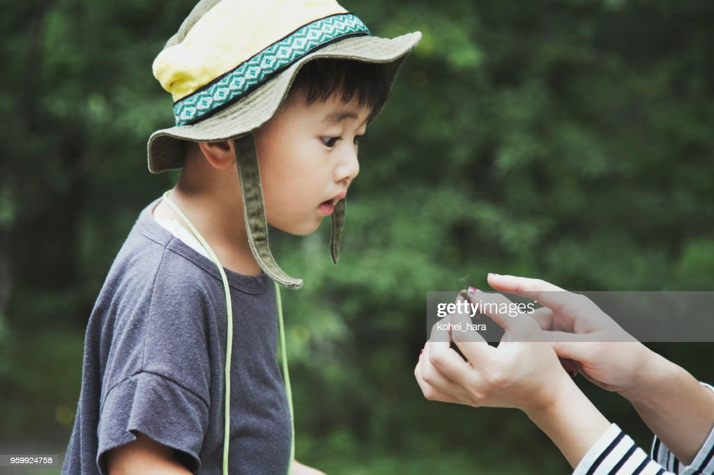 Ein Junge beobachtet eine Libelle, die seine Mutter im Wald gefangen : Stock-Foto