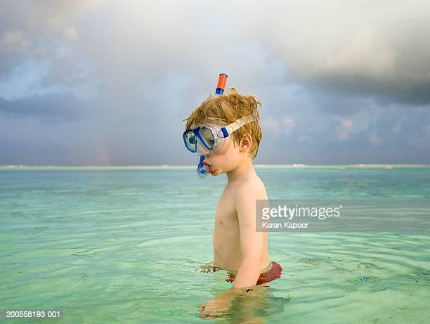 Boy (4-5) wearing snorkelling gear, wading into lagoon, side view