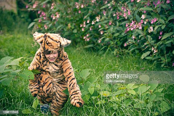 boy wearing tiger costume outdoors - animal costume stock pictures, royalty-free photos & images