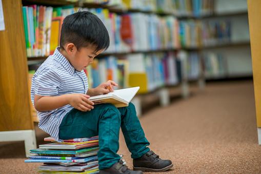 Boy Who Loves Reading 971404756
