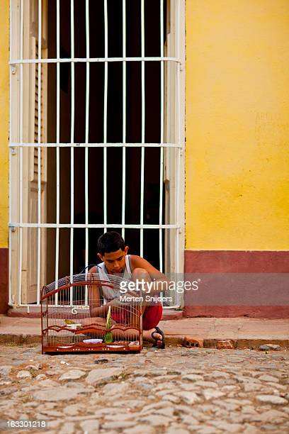 boy with a birdcage on the street - merten snijders stock-fotos und bilder