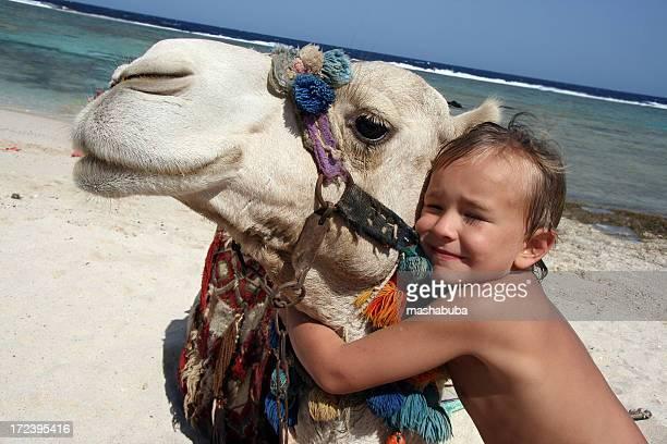 junge mit einem kamel - camel active stock-fotos und bilder