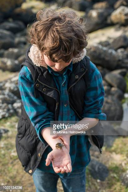 Boy with a crab