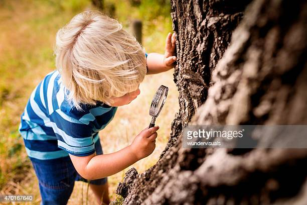 Boy with a magnifying glass studying a tree's trunk