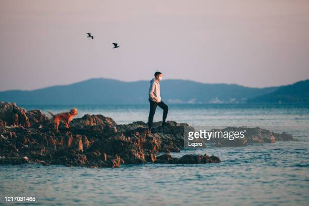 a boy with a protective medical mask, he enjoys sunset with his dog on a rocky shore. - domestic animals stock pictures, royalty-free photos & images
